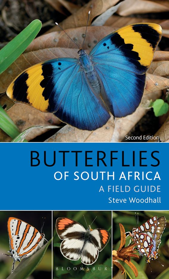 Field Guide to Butterflies of South Africa cover