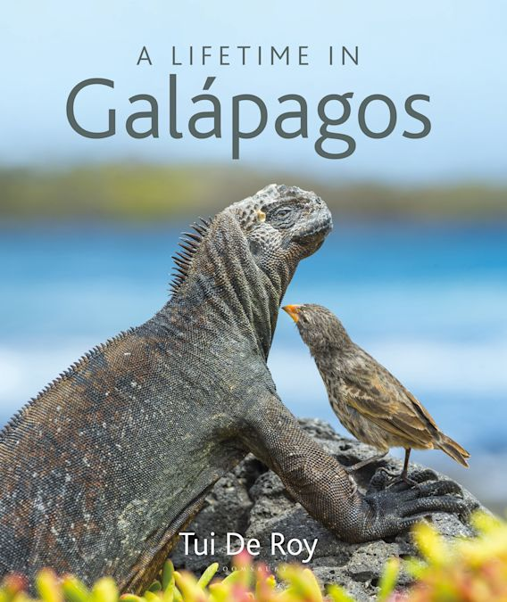 A Lifetime in Galapagos cover