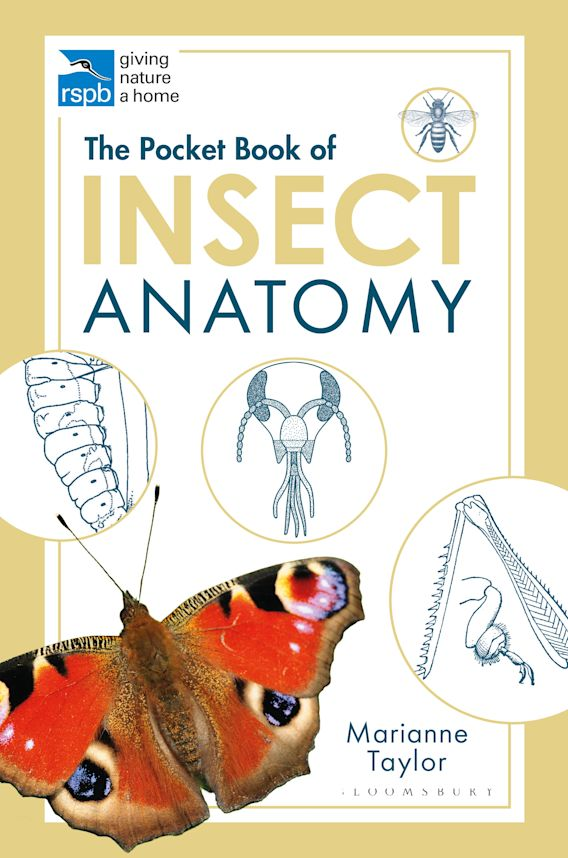 The Pocket Book of Insect Anatomy cover