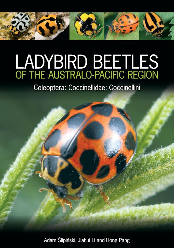 Ladybird Beetles of the Australo-Pacific Region cover