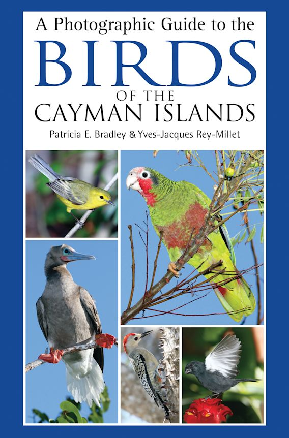 A Photographic Guide to the Birds of the Cayman Islands cover