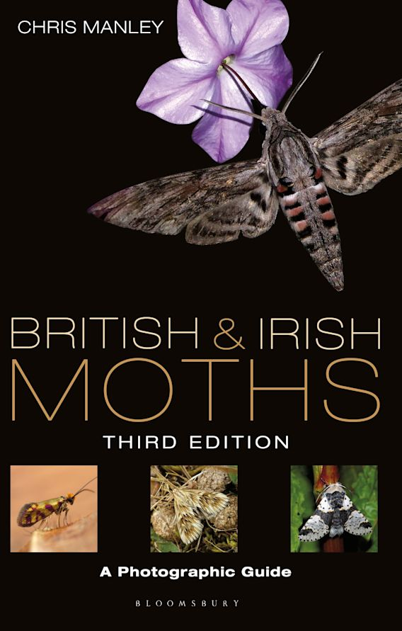 British and Irish Moths: Third Edition cover