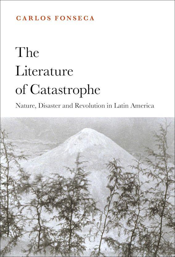 The Literature of Catastrophe cover