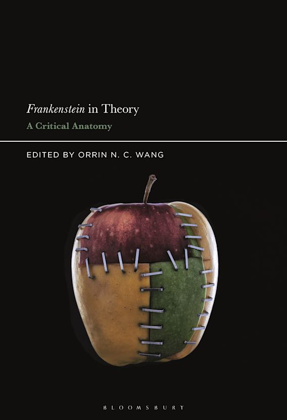 Frankenstein in Theory cover