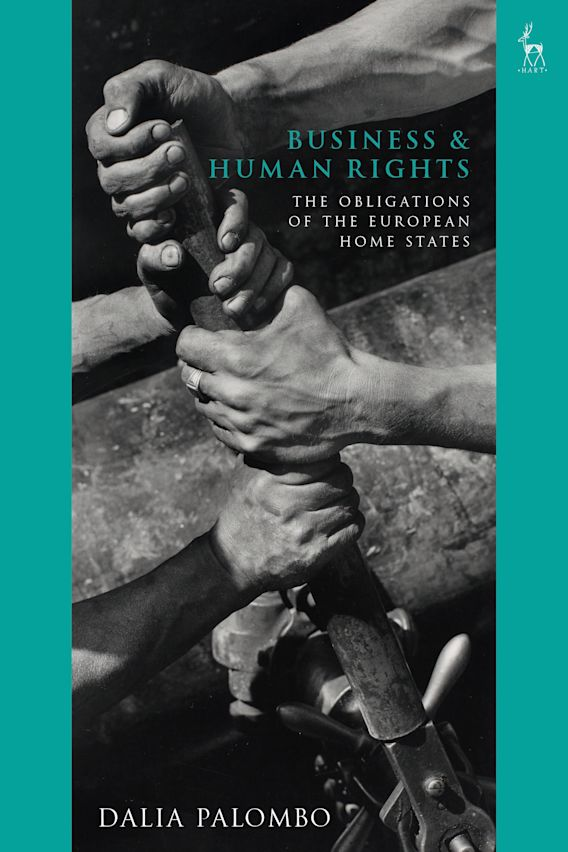 Business and Human Rights cover