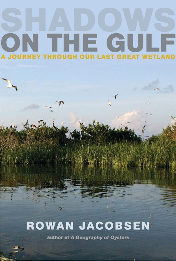 Shadows on the Gulf cover