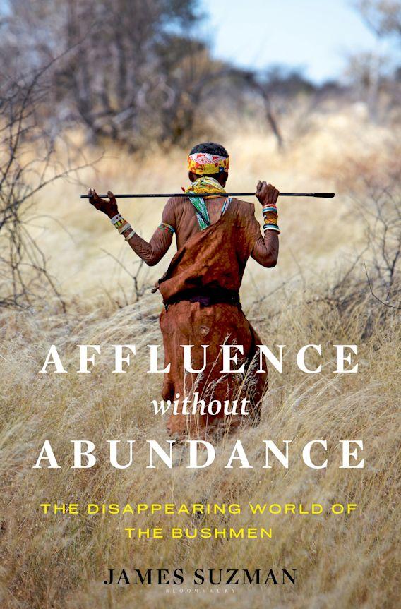Affluence Without Abundance cover