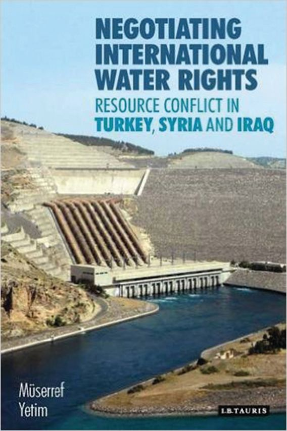 Negotiating International Water Rights cover