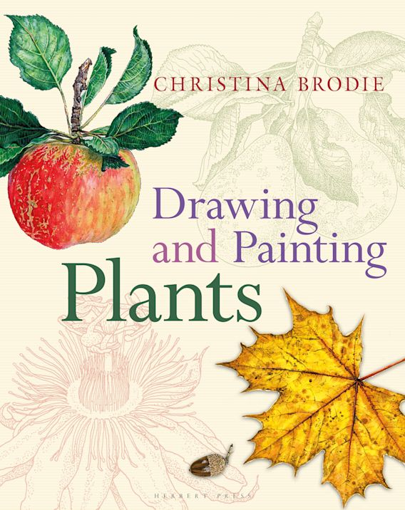 Drawing and Painting Plants cover