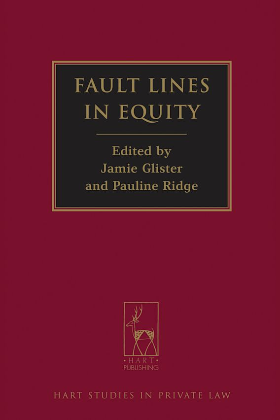 Fault Lines in Equity cover