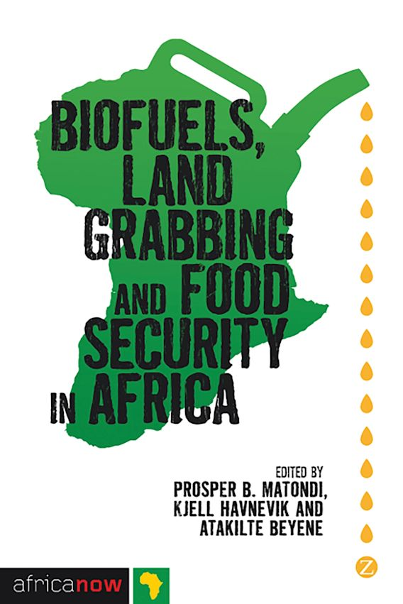 Biofuels, Land Grabbing and Food Security in Africa cover