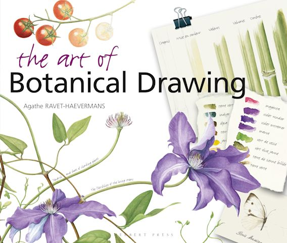 The Art of Botanical Drawing cover