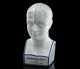 This image shows Lorenzo Niles Fowler's detailed system of phrenology shown on this phrenological head.
