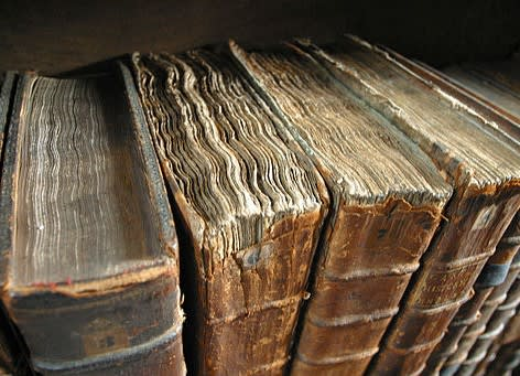 This image shows old books bindings.