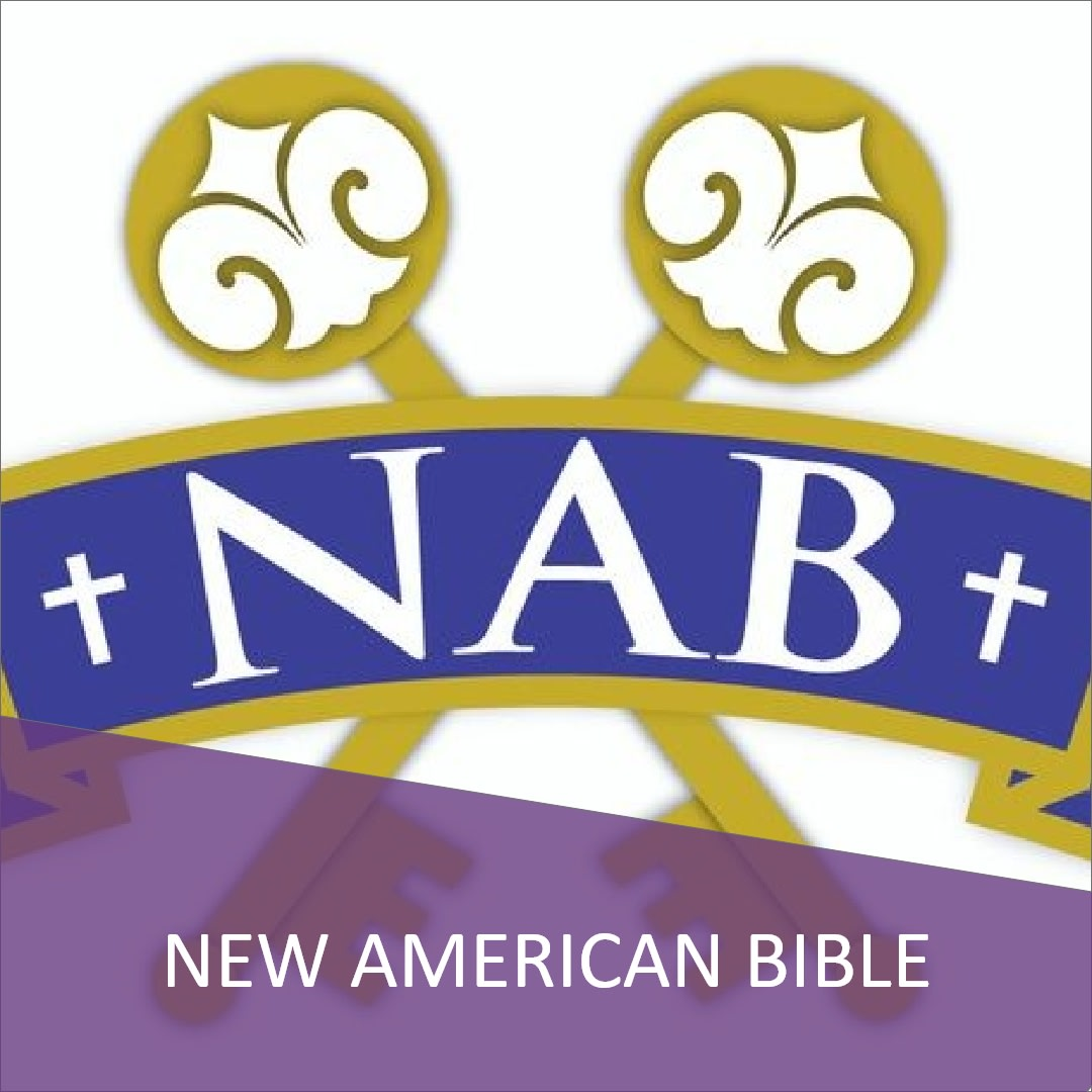 Click here to view the New American Bible