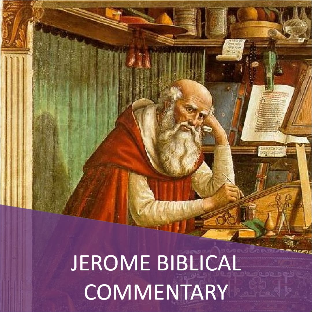 Click here to view the The Jerome Biblical Commentary