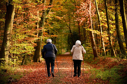 An elderly couple go for a walk on a woodland path in the Fall