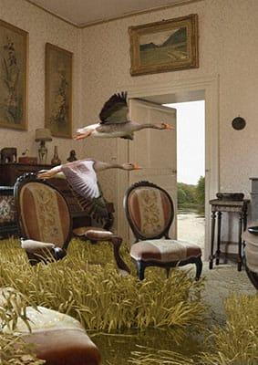 2014 Intérieurs animaliers  Deux oies dans leur salon, collage by Pierre-André Sauvageot.