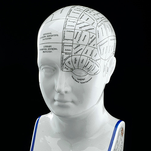 Lorenzo Niles Fowler's detailed system of phrenology is shown on this phrenological head.