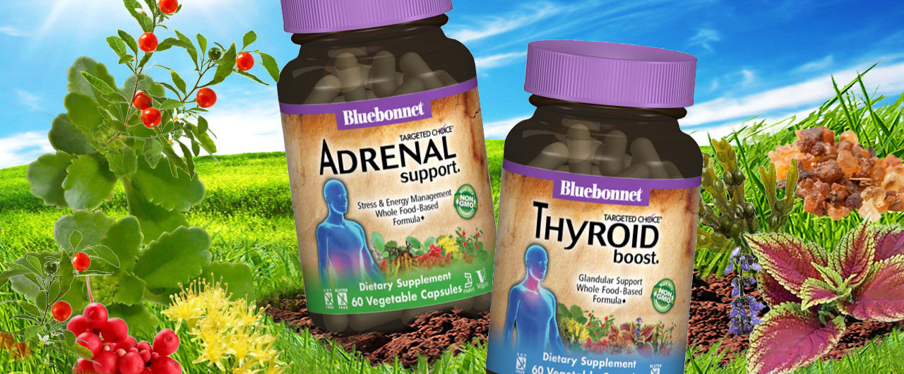 UNDERSTANDING THE THYROID-ADRENAL CONNECTION