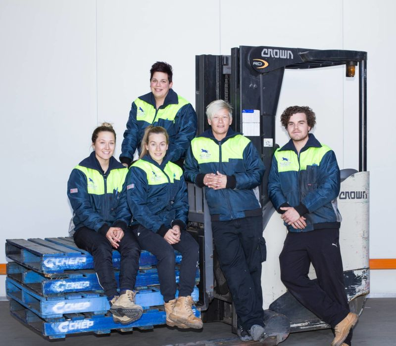 Stock Team