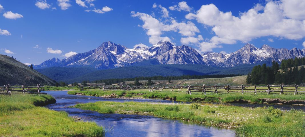 BlueCross of Idaho Careplus Inc.
