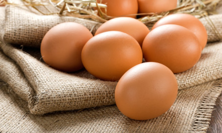 Runny Eggs now OK in pregnancy – Bring on the eggy soldiers!