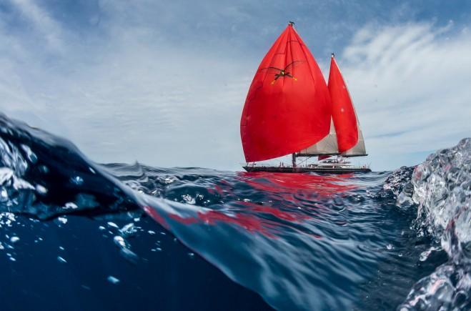 S/Y Seahawk Yacht #8