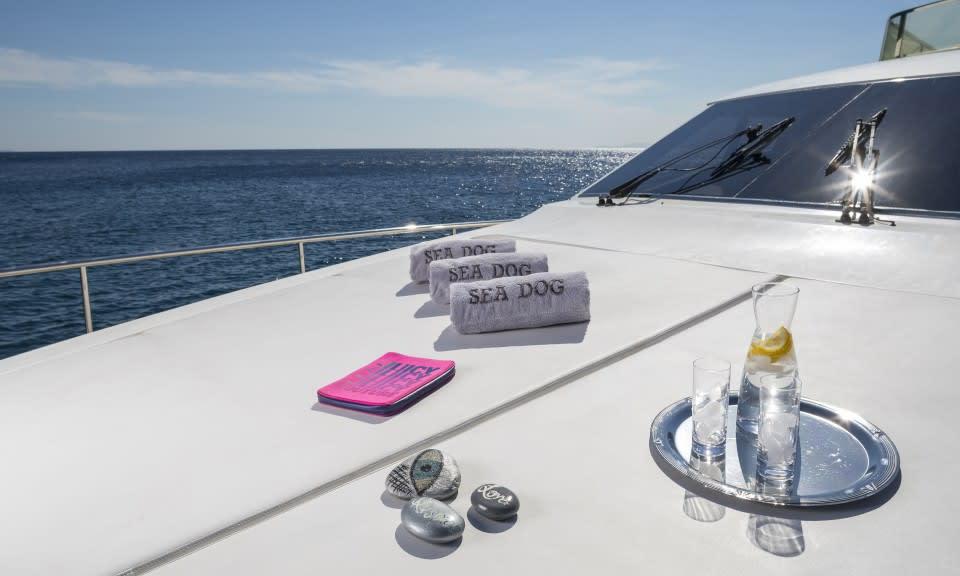 M/Y Sea Dog Yacht #8