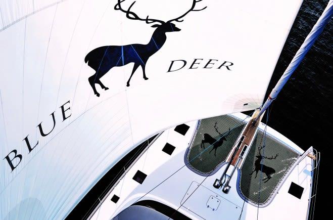 S/Y Blue Deer Yacht #2