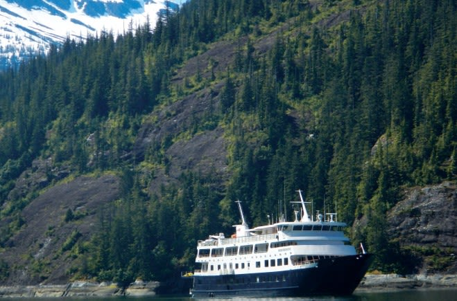 M/Y Endeavour Yacht #5