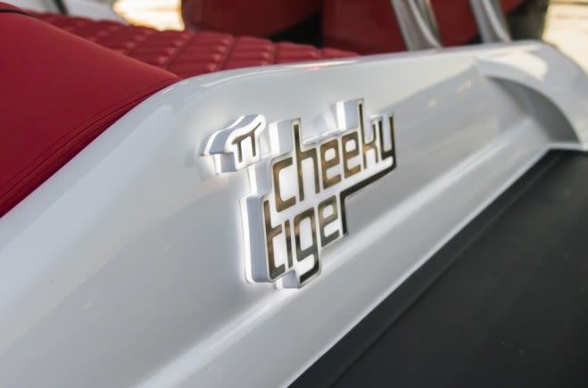 M/Y Cheeky Tiger Yacht #8