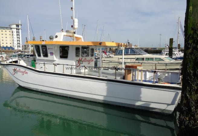 Yellowfin - Offshore 40