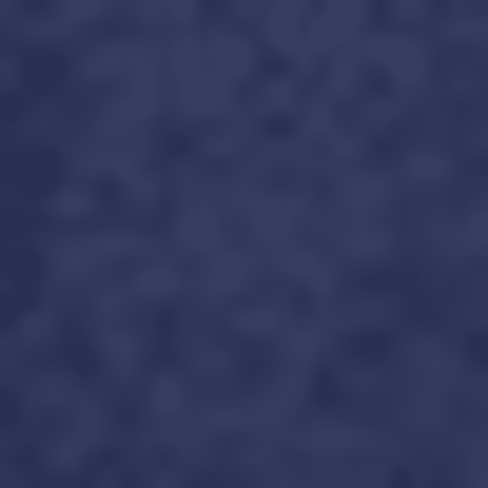 NAVY-031