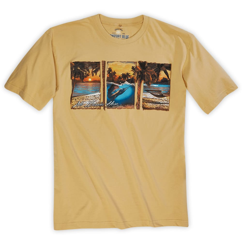 NEWPORT BLUE Men's No Worries Here Harvest Tee - HARVEST