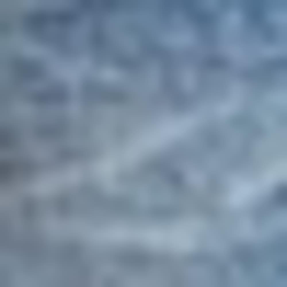 VERITABLE 0641