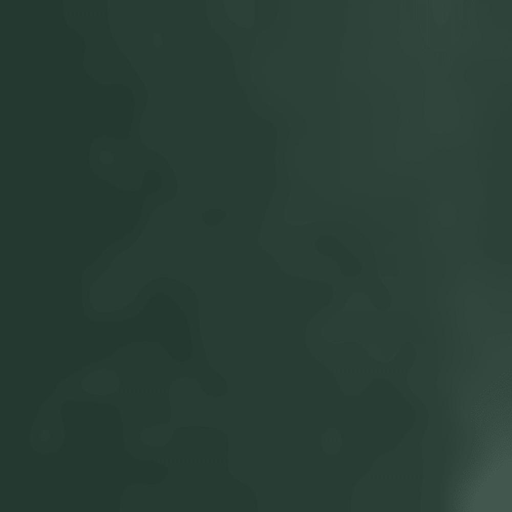 358 DARK GREEN