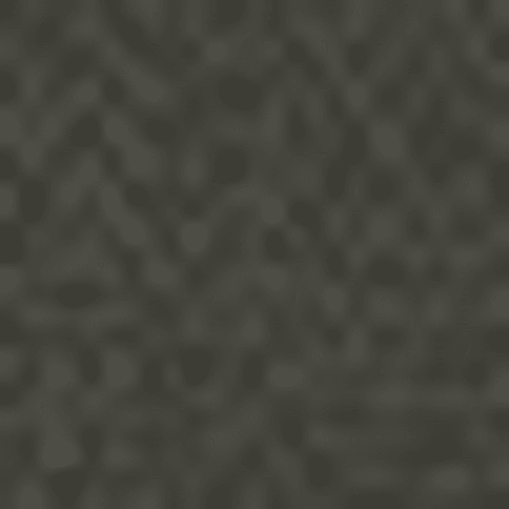 RNSD BLACK OLIVE-RBV