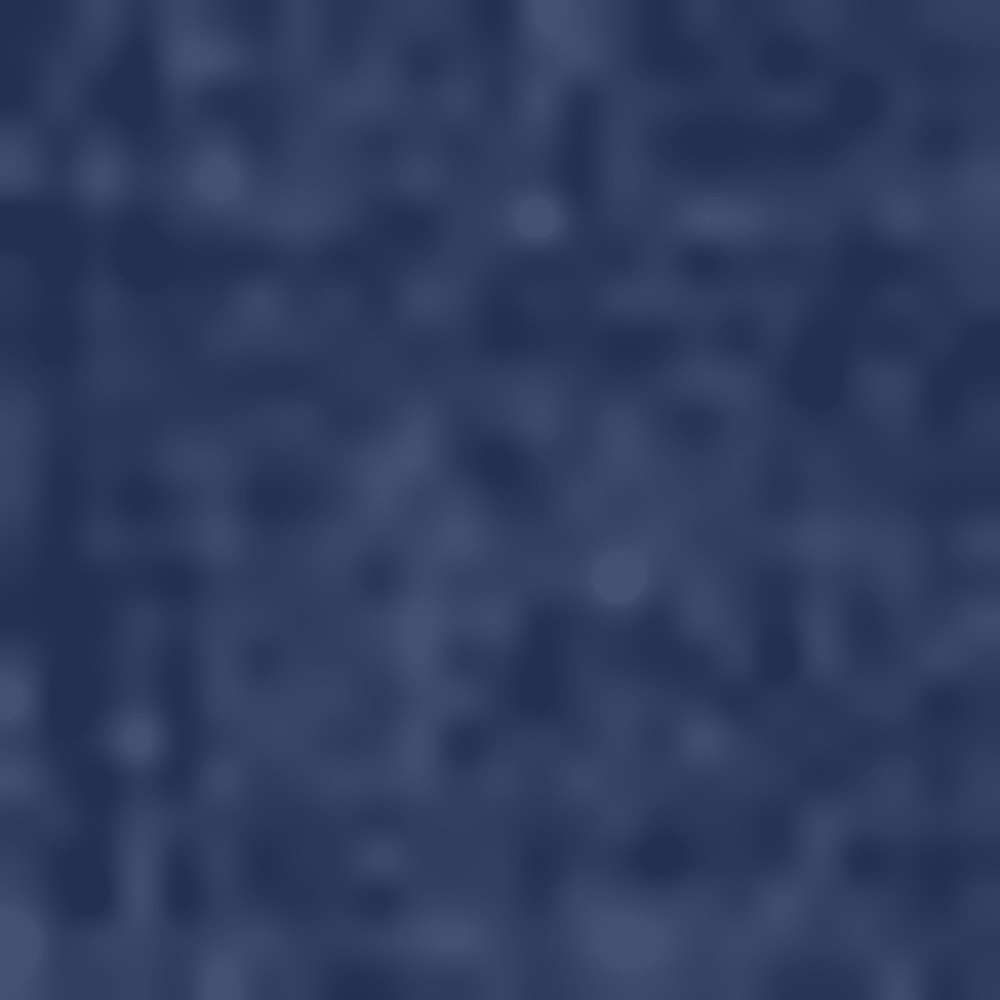 0048-MOODY BLUE
