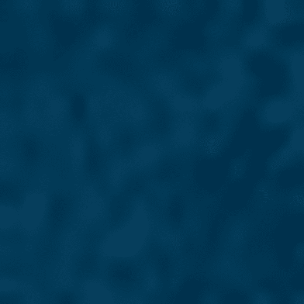 489-PHEONIX BLUE