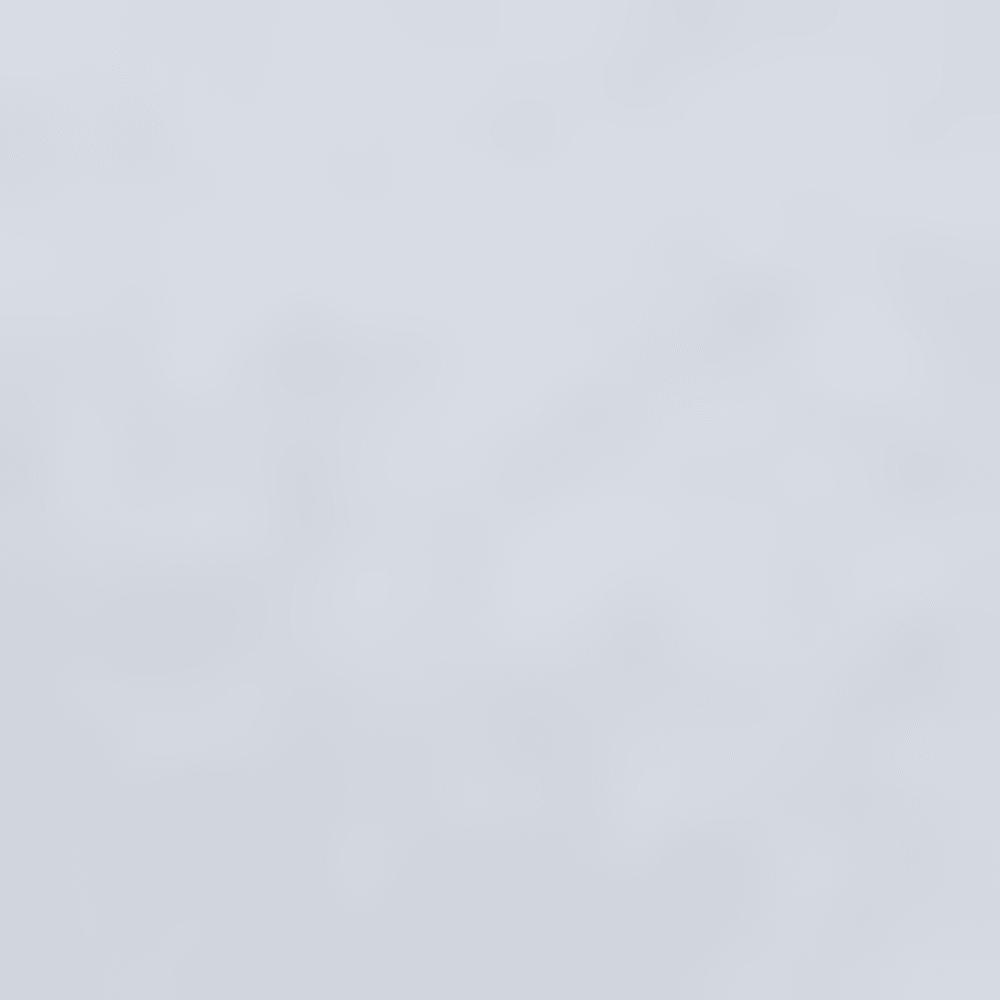 BRUNNERA BLUE-456