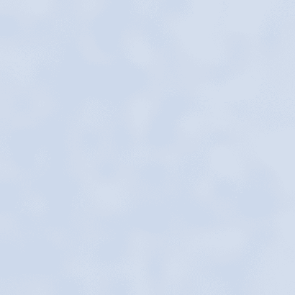 DUTCH BLUE-467