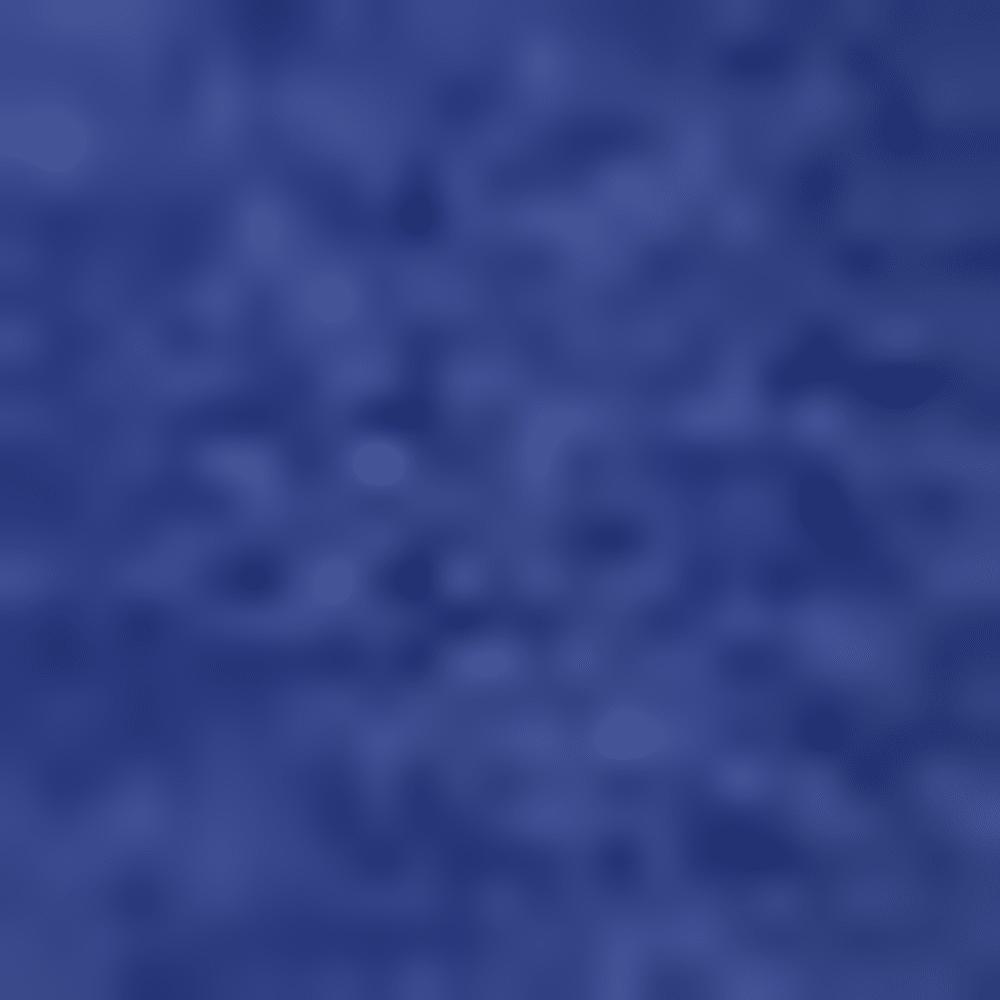 BOLD BLUE HTR-AY7628