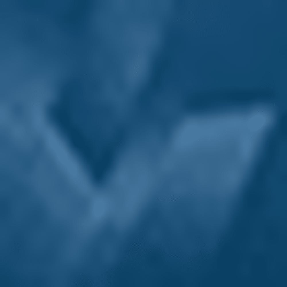 BLKOUT NAVY/STL-997
