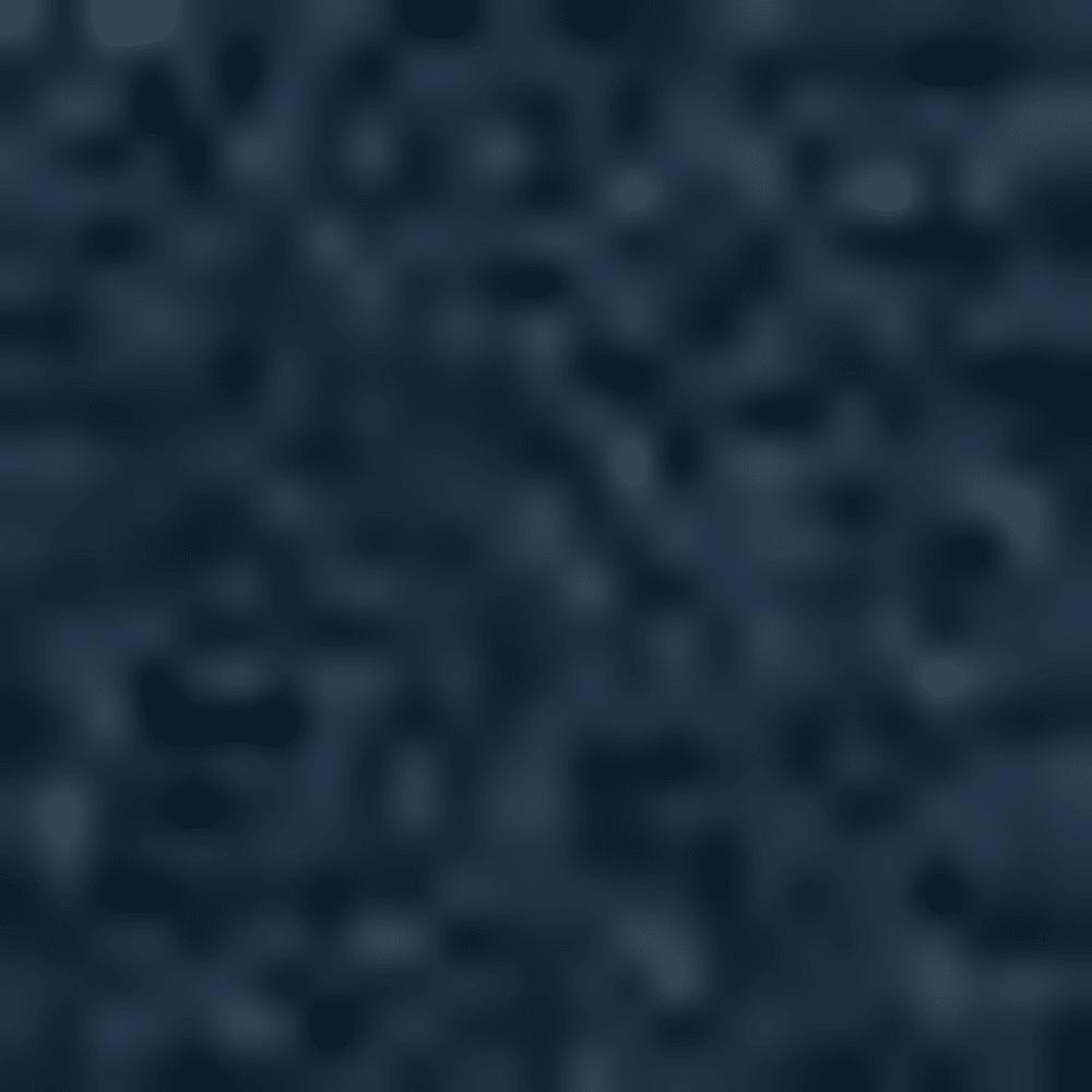ACADEMY/BRILL-408