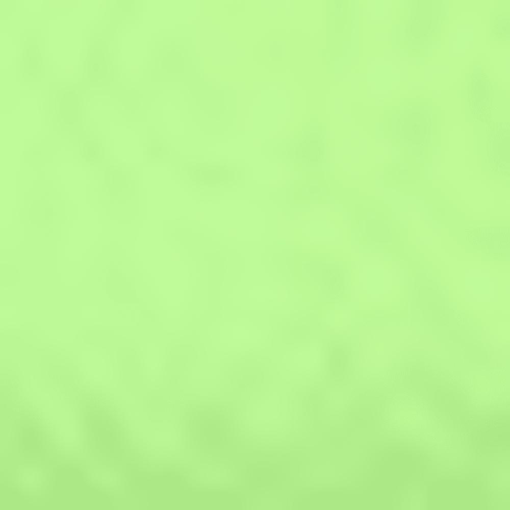 FUEL GREEN ASST 962