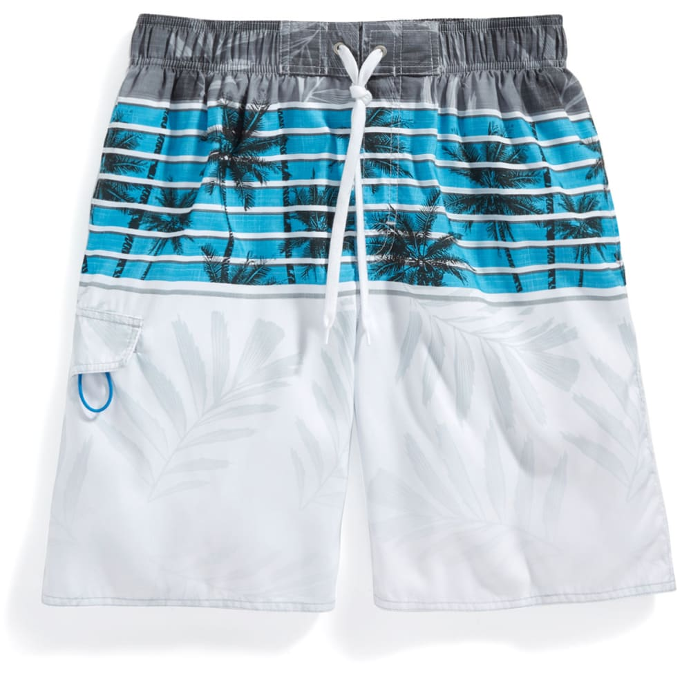 NEWPORT BLUE Men's Skyline Palms Swim Shorts - BLUE-0422