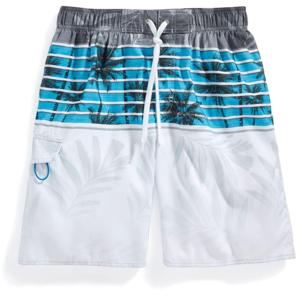 NEWPORT BLUE Men's Skyline Palms Swim Shorts - BLUE-0422