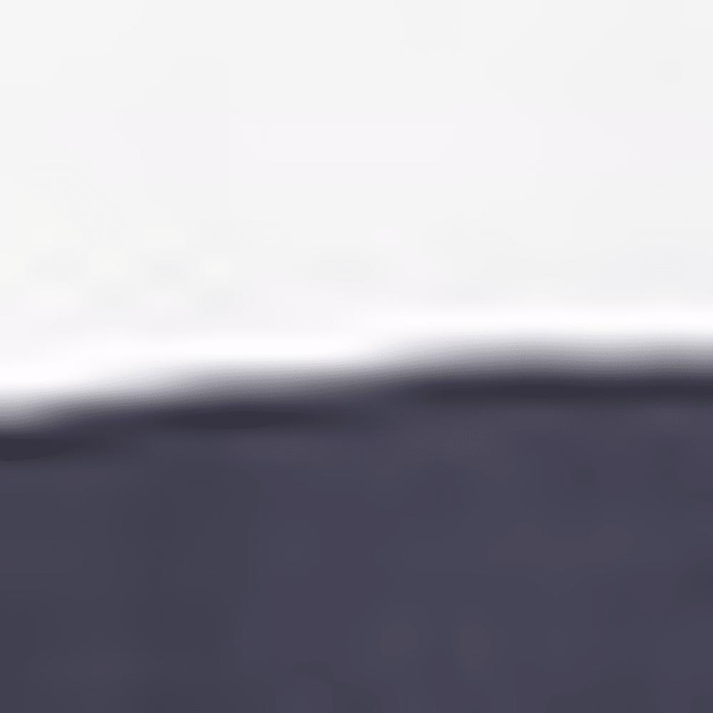 WHITE / NAVY HTR