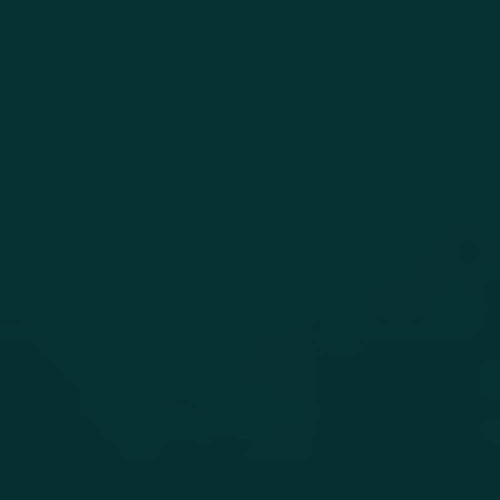 ARDEN GRN/GRAPH-919